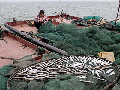 宁波象山全面促渔业长治久安