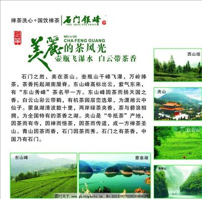 """衢江区""""三新""""""""三建""""""""三变""""推动茶产业""""三化""""发展"""