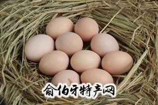 """""""绿健""""牌营养鸡蛋"""