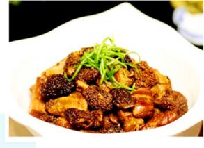 云南:珍稀食用菌品种羊肚菌迎来收获季
