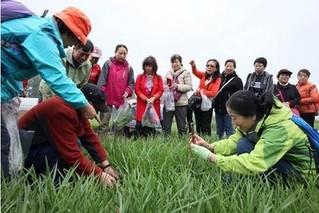 北京农业极速5分排列3局带你走进特色基地 尝京味韭菜美食