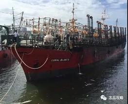 阿根廷鱿鱼捕捞量大幅下滑 达到了历史最低水平