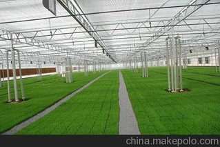 光伏温室生产栽培技术
