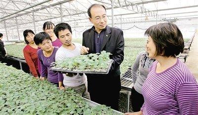 山东滨州:强化措施不断提高农业科技含量