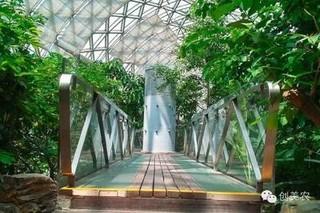 温室大棚机械卷帘技术