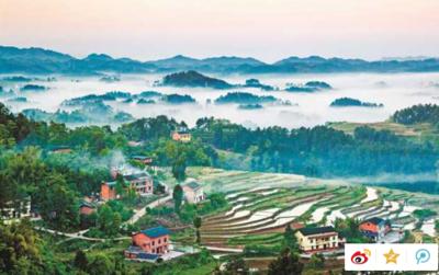 重庆多个生猪养殖项目开工 确立新增产能100万头目标