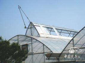 新型日光温室卷膜通风系统的应用