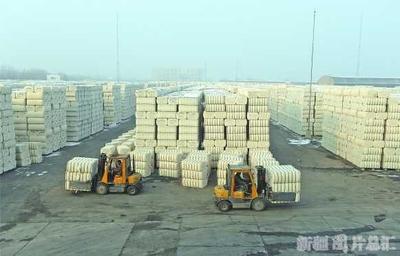 新疆农业生产再获丰收