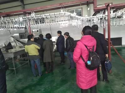 """重庆对家禽屠宰产品实施""""两证一标""""可追溯管理"""