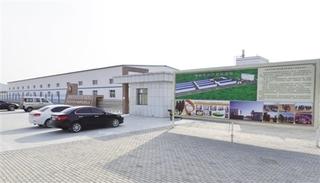 阿拉善右旗将建成全区首个骆驼产业科技园