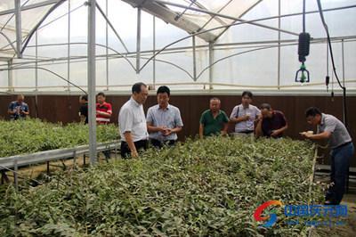 全国农业农村政策与改革工作会议暨家庭农场座谈会召开