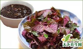 加味四味紫苏和胎饮的功效与作用