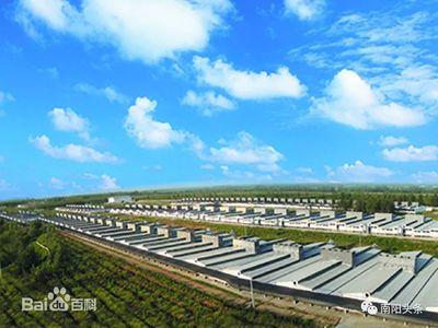 曹县:建立国际领先的生猪智慧化养殖及畜牧业产业体系