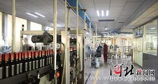 武都区发展油橄榄产业 政企联动新模式助农增收致富