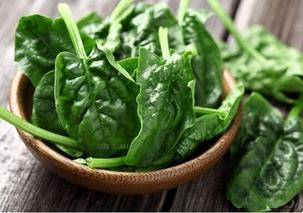 大头菜和芥菜是不是一种蔬菜?