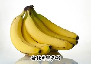香蕉、大蕉