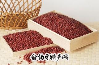 天津红小豆