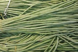 韦家庄蔬菜