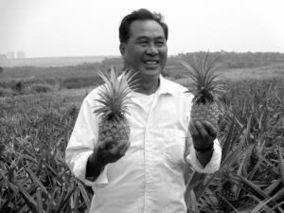 """好清村香水菠萝成功打造""""一村一品""""特色"""