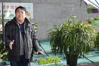 天津市武清区3万亩韭菜田推广绿色杀虫新技术