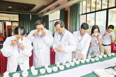 做有文化的生态茶