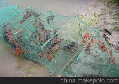 抗击非法捕捞 促进渔业发展