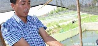 农村人工养殖水蛭能致富 价格高前景好