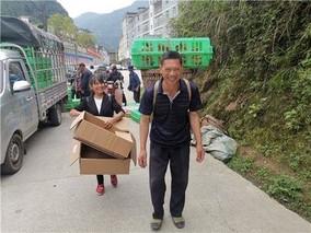 武隆:扶贫鸡苗送进村 产业脱贫有保证