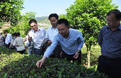 贵州农业政策性保险实践与探索