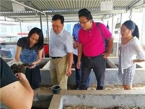 三亚大力发展蚯蚓养殖业
