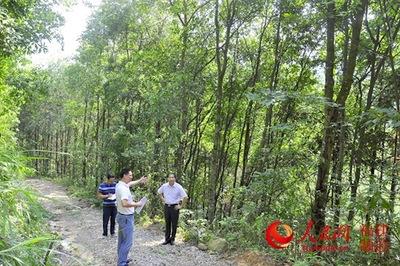 国有林场要改革发展保障生产安全