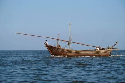 我国已核减渔船1.6万艘