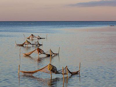 全面推进渔业高质量发展