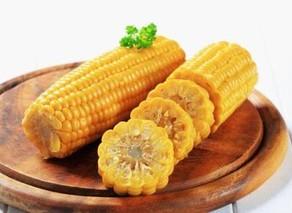 如何选择特种玉米种子