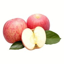 晚上吃苹果