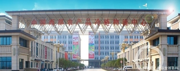 重庆农产品搭上物流快车 日均吞吐量约7000吨