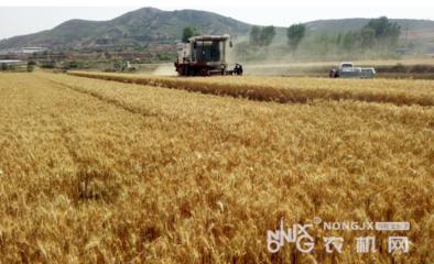 湖北出台指导意见保农业生产 努力夺取灾年农民增收