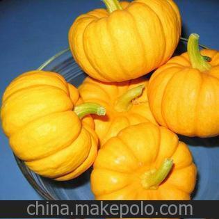 南瓜种植:盆栽南瓜的种植方法